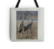 Cherokee Marsh Sandhill Cranes  Tote Bag