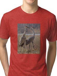 Cherokee Marsh Sandhill Cranes  Tri-blend T-Shirt