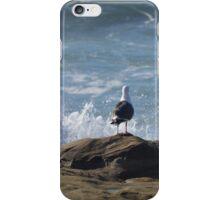 Seagull Watching The Splashing Water ~ Sunset Cliffs, California iPhone Case/Skin