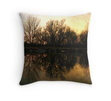 Reflection of my Realm Throw Pillow
