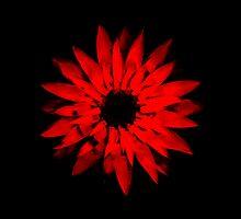 Burning Red by Benjamin Nitschke