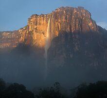 Salto Angel, Venezuela by Grant Forbes