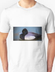 Greater Scaup  T-Shirt