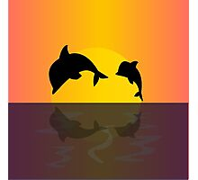 Dolphins at sunset Photographic Print