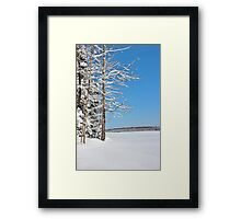At the Forest Edge Framed Print