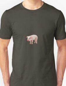 Down on the farm with Steve Pigscemi T-Shirt