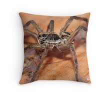 The Dirtiest Spider Ever Seen? Throw Pillow
