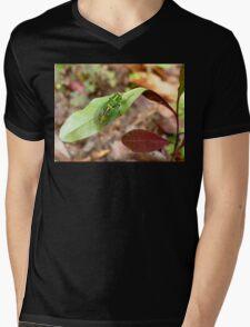 April Green Cicada - NZ Mens V-Neck T-Shirt