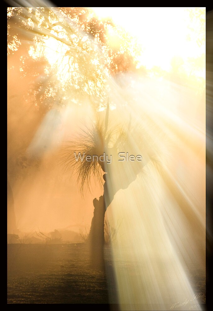 Hope For All by Wendy  Slee