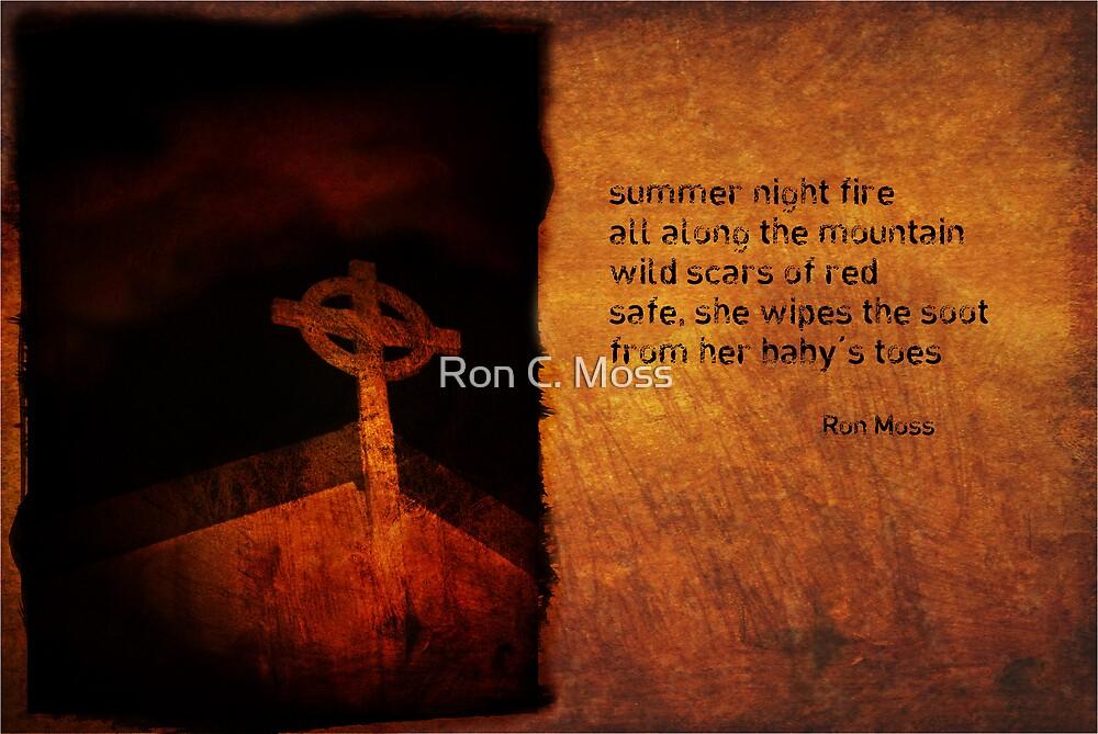 summer night fire as a haiga by Ron C. Moss