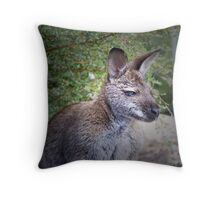 Bennetts Wallaby Throw Pillow