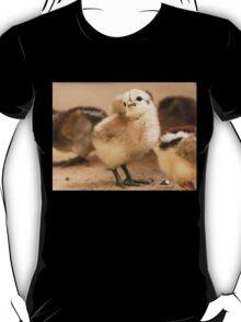 I'm Posing - Chick - NZ T-Shirt