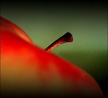 Apple by Bluesrose