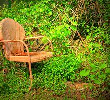 Vintage Garden Chair by Tony  Bazidlo