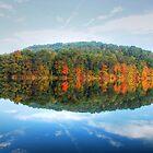 Rural Life by Tony  Bazidlo