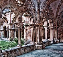 Cloisters. Church of Santa Cruz, Coimbra, Portugal by vadim19