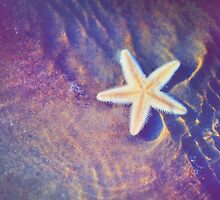Sea Star. Memory of the Sunny Days in Tropics by JennyRainbow