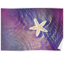 Sea Star. Memory of the Sunny Days in Tropics Poster