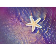 Sea Star. Memory of the Sunny Days in Tropics Photographic Print