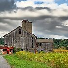 Storm Clouds and Farms by Tony  Bazidlo