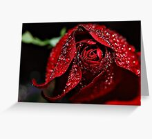 Red red layers Greeting Card