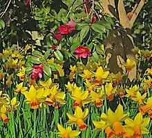 Spring by John Thurgood