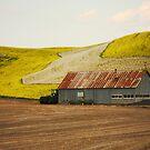 Farm by Olga Zvereva