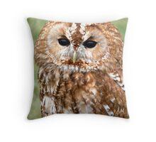 Tawny Owl Throw Pillow