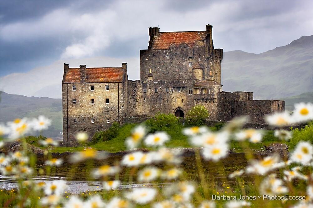 Eilean Donan Castle and Summer Flowers, Dornie, SCOTLAND. by PhotosEcosse