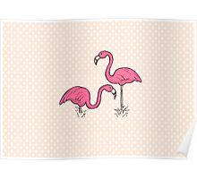 Pink Flamenco Flamingos Poster
