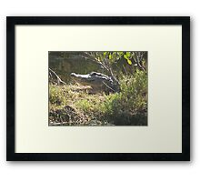 The Welcome Grin Framed Print