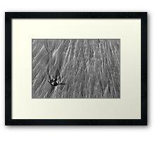 Lone pebble Framed Print