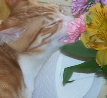 Vincent Smells The Flowers by grannyjune
