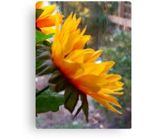 Happiness is Yellow Canvas Print