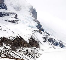 Athabasca Glacier  by Barbara Burkhardt