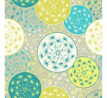 Pattern with dandelion flowers Photographic Print