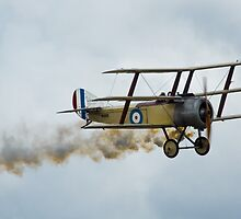 Great War Display Team - RAF Cosford Air Show 2012 by Blitzer