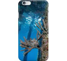 Finding Froggy iPhone Case/Skin