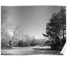 Winter Meadow Poster
