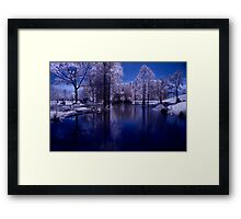 settled Framed Print