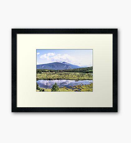 Alpine Marsh Framed Print