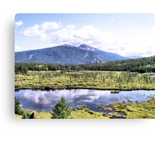 Alpine Marsh Canvas Print