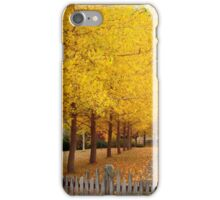 Splash of Gold iPhone Case/Skin