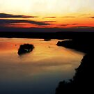 Mississippi Palisades State Park by Marija