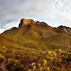 Bluff Knoll, Stirling Range, Great Southern Region, WA by James Deypalan