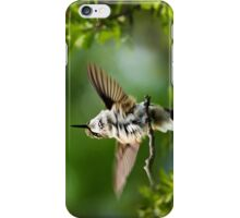 Hummingbird Happy Dance iPhone Case/Skin