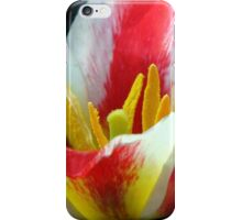 Time For Tulips iPhone Case/Skin