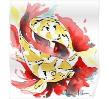 Two Yellow Koi Poster