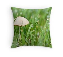 Waking Up For The Sun Throw Pillow