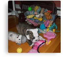 Isabelle and her Toys Canvas Print